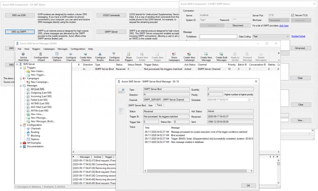 SMS Server Manager - Bind test OK
